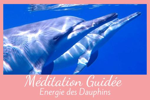 Méditation guidée avec l'énergie des Dauphins