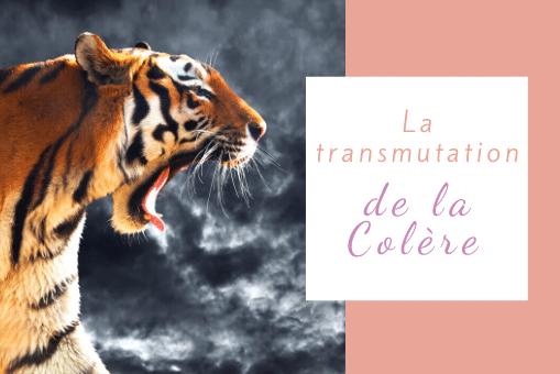 transmutation de la colère